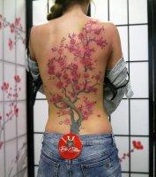 edo-tattoo-3860-carina-ruecken