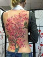 edo-tattoo-3866-kirschblueten
