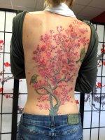 edo-tattoo-3867-kirschblueten