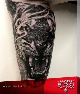edo-tattoo-NAKATA-realistic-tiger