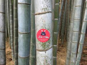 EDO Tattoo-2343-bambushain